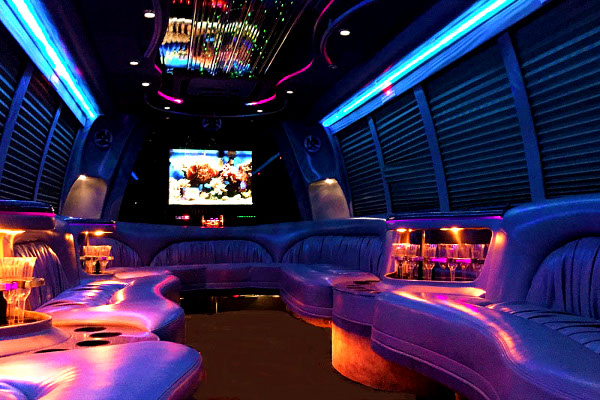 Dallas 18 Passenger Party Bus